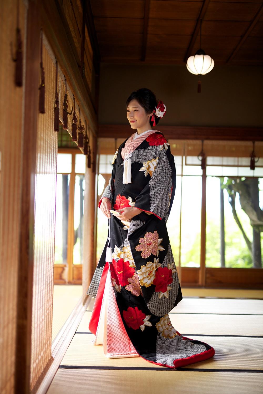 サヤ古都桜黒絞り牡丹【1】