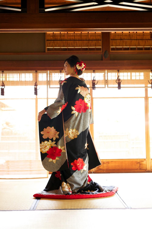 サヤ古都桜黒絞り牡丹【2】