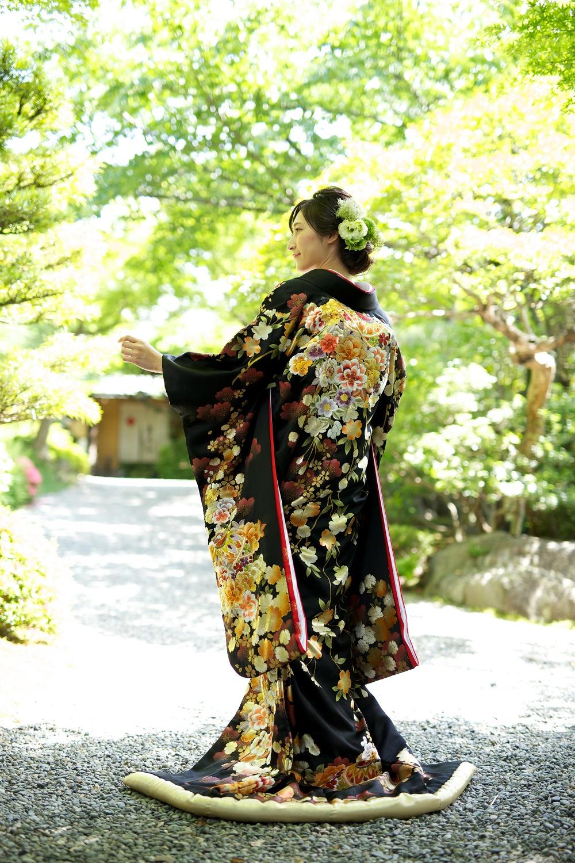 金彩桜菊に毬絵模様【2】
