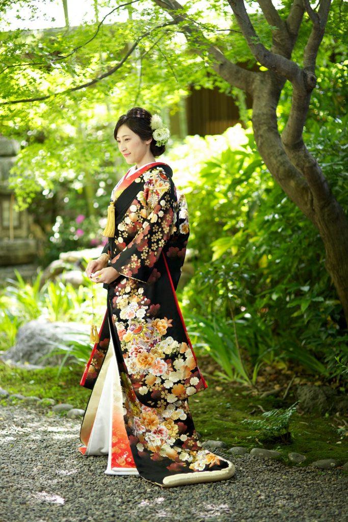 金彩桜菊に毬絵模様